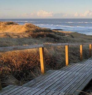 Scalinata di legno per raggiungere la spiaggia